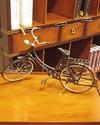Decorative-Ladies-Bicycle-Large_9786000505882