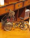 Decorative-Rickshaw_9786000505912