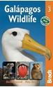 Galapagos-Wildlife-Bradt-Guide_9781841623603