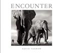Encounter_9781908337177