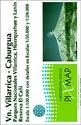Volcán-Villarrica-Lago-Caburgua_9789568887032