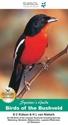 Birds-of-the-Bushveld_9781875093885