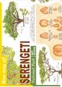 Serengeti-National-Park_XL00000074653