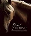 Spirit-Horses_9781608681426