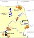 Bialowieza Forest (Polish part)