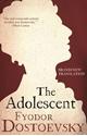 The-Adolescent_9781847494993