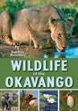 Wildlife-of-the-Okavango_9781775843382