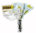 Sydney-Crumpled-City-Map_9788890573248