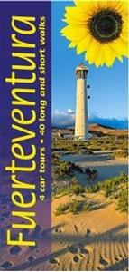 Fuerteventura Sunflower Landscape Guide
