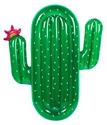 Lie-On-Float-Cactus_9339296033258
