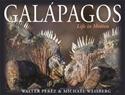 Galapagos-Life-in-Motion_9780691174136