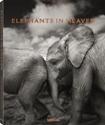 Elephants-in-Heaven_9783961710478