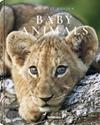 Baby-Animals_9783961711413