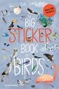 The-Big-Sticker-Book-of-Birds_9780500652008