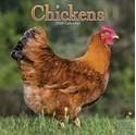 Chickens-2020-Calendar_9781785806995