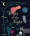 Bright-in-the-Night_9780500652190