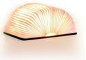 Smart-Book-Light-Walnut-Mini_0700900317252