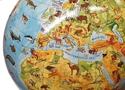 Insight Globe: Animal Earth Globe